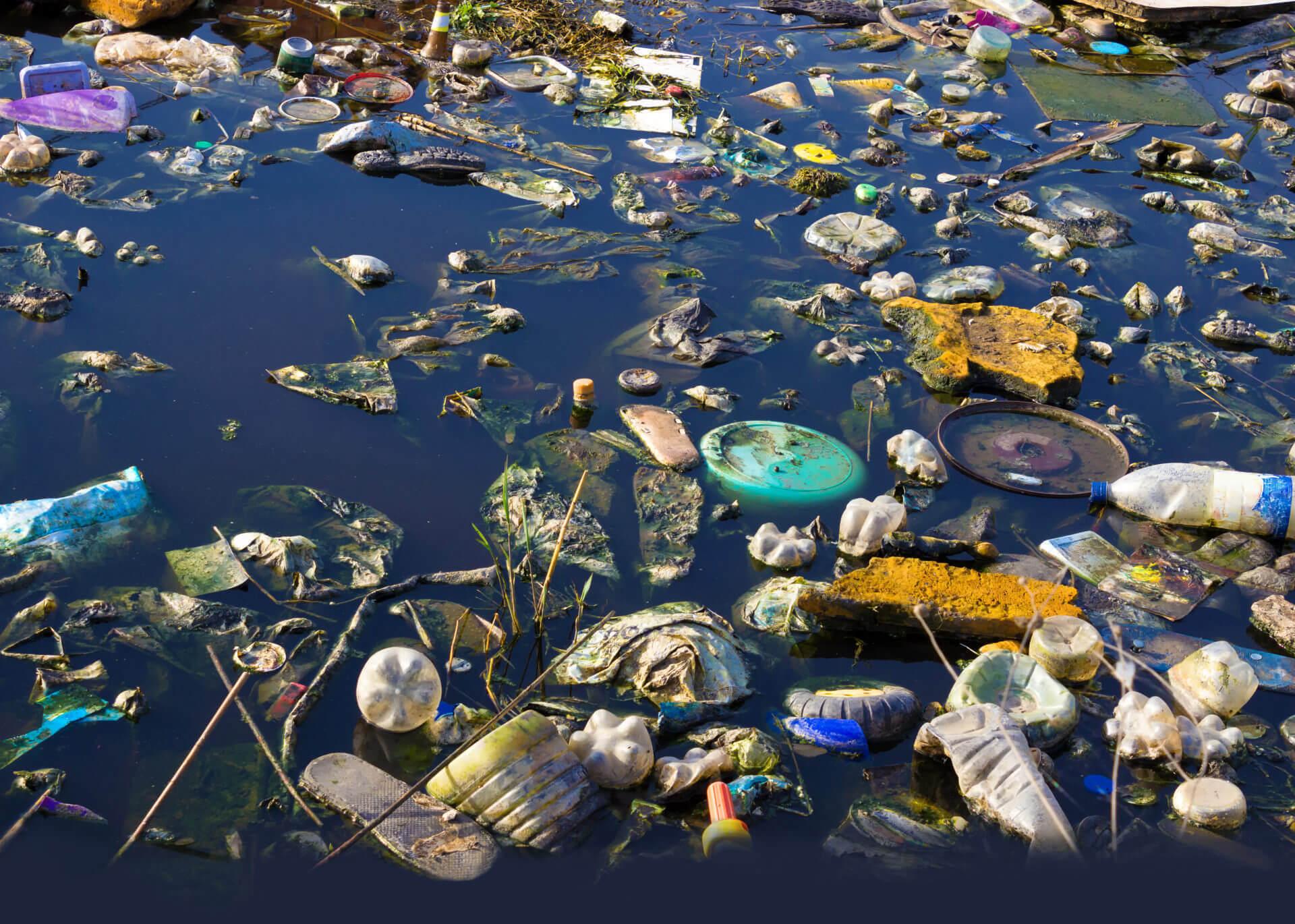 BeBiodiversity Soupe de plastique