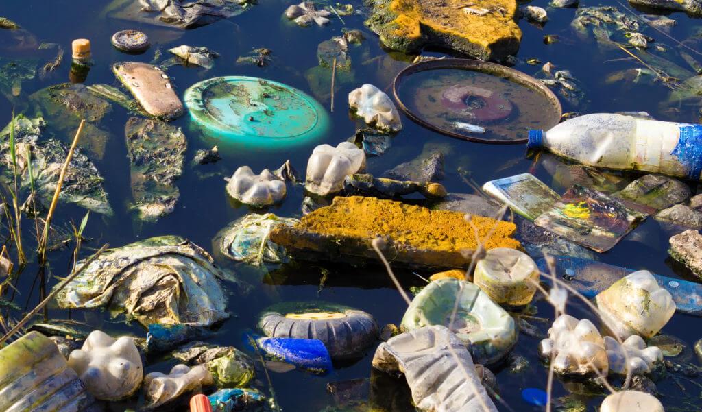 BeBiodiversity Plastic in onze borden?!