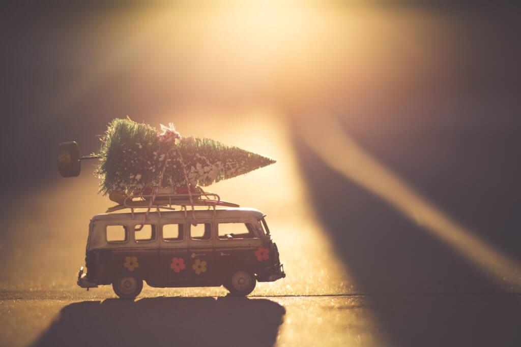 BeBiodiversity Een duurzame kerstboom…?