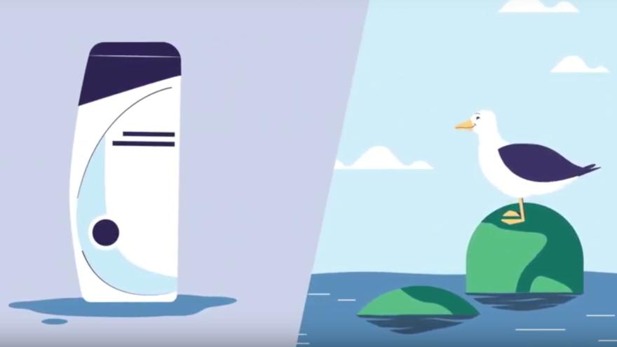 BeBiodiversity de shampoofles en de noordse stormvogel