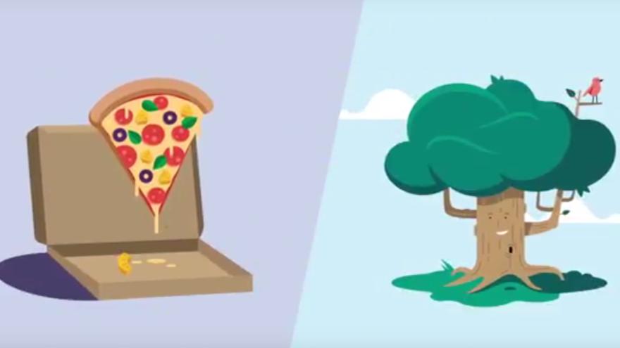 BeBiodiversity de hawai pizza en de beukenboom