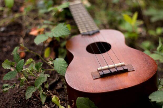 BeBiodiversity Hout en muziekinstrumenten
