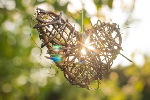 BeBiodiversity Donner un coup de pouce à la biodiversité avec la Fête des Voisins