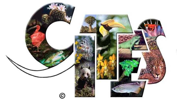 BeBiodiversity De 18de Conferentie van de Partijen bij CITES (COP 18)