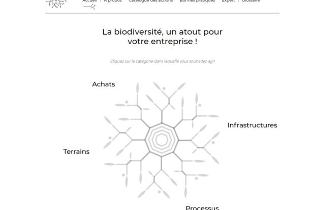 BeBiodiversity Le BiodiversiTree aux Publica Awards 2020