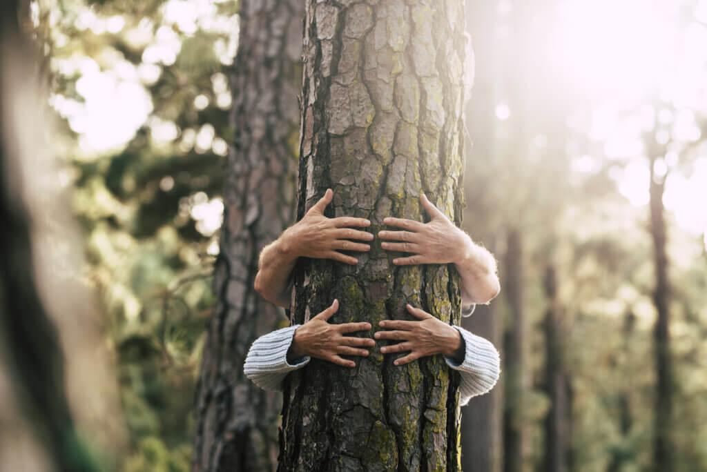 BeBiodiversity Een nieuwe manier van consumeren om bossen te beschermen