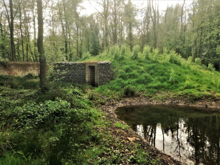 BeBiodiversity Campine – Een groene corridor tussen twee Natura 2000-zones