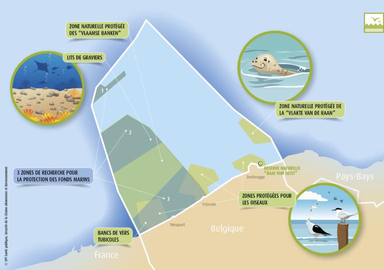 BeBiodiversity La mer du Nord sous la loupe